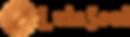 lula-soul-copper-logo.png