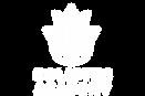 holistec academy logo v2.png