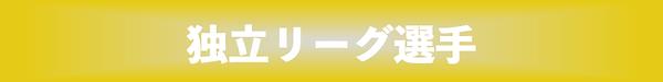 独立リーグ 黄色.png