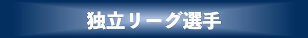 独立リーグ 青.png