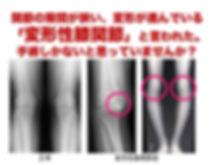 42FF6008-C486-46D2-882F-30B4E3A69E77.jpe