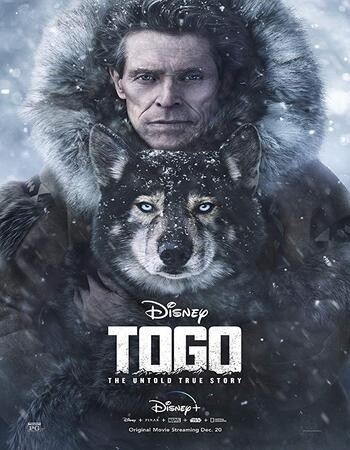 Togo (2019) WEB-DL 720p Full English Movie Download