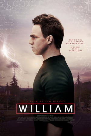 William 2019 WEB-DL 720p Full English Movie Download