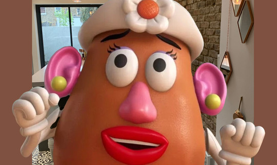 Portraits in Various Resolutions - Mrs Potato Head