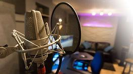 Halfyard Studios TLM mic view