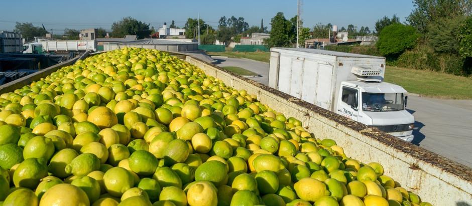 China abrirá su mercado a los limones argentinos