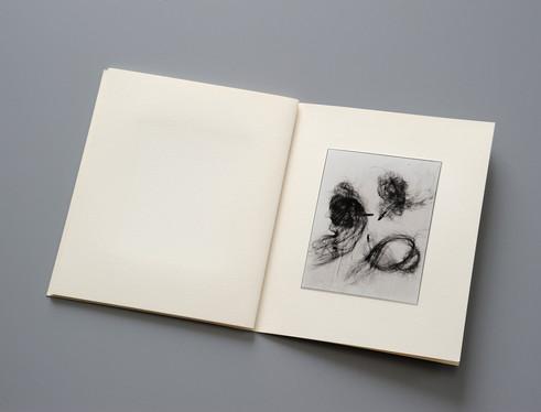 ポートフォリオ「Photogenic Drawings」 西村陽一郎