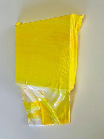 杉田陽平|pith series  white and yellow 2