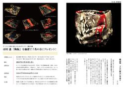 vol.11-10-11