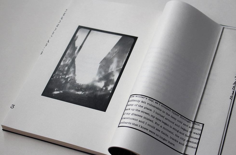 artbook13jpg.jpg
