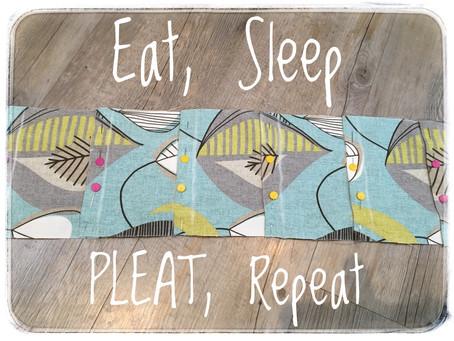 Eat, Sleep, PLEAT, Repeat