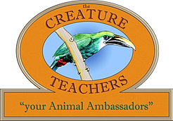 creature teachers logo