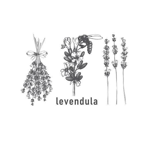 Lavender grey | grafikás női fehér pamutpóló