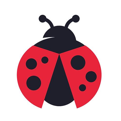 Ladybird small | grafikás női fehér pamutpóló