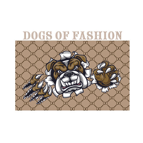 Dogs of fashion | grafikás férfi fehér pamutpóló