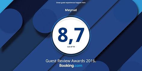 Guest Review Award 16.jpg