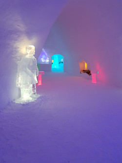 The Ice Cathedral