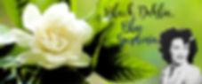 Black Dahlia Blue Gardenia banner