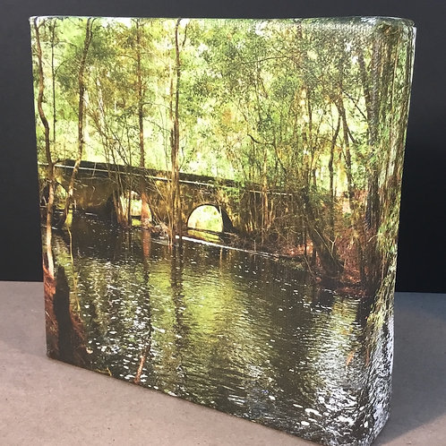 Central Florida back county bridge photo canvas print by artist Isaac Jeter