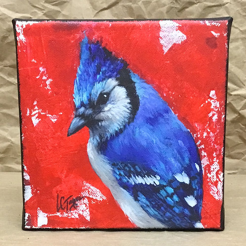 Blue Jay bird giclee print on canvas by artist Lee Taylor