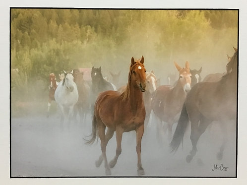 """Heart 6 Horse Roundup"" photograph by artist Lillian Cucuzza"