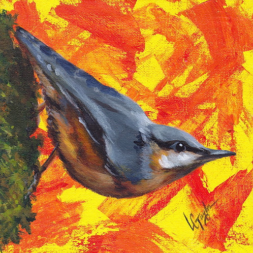 Nuthatch bird giclee print on canvas by artist Lee Taylor