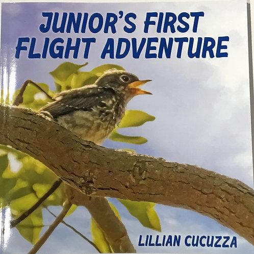 """Junior's First Flight Adventure"" children's book by artist Lillian Cucuzza"