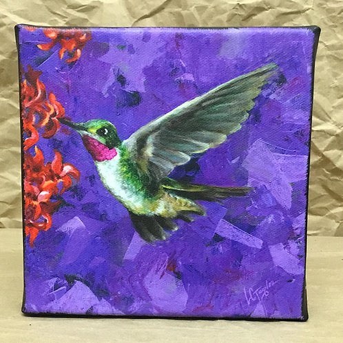 Hummingbird giclee print on canvas by artist Lee Taylor