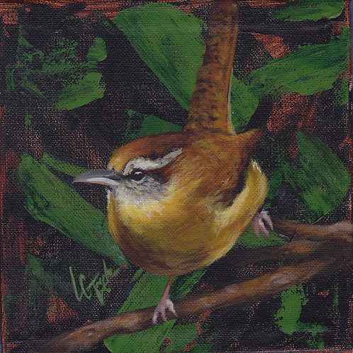 Carolina Wren bird giclee print on canvas by artist Lee Taylo
