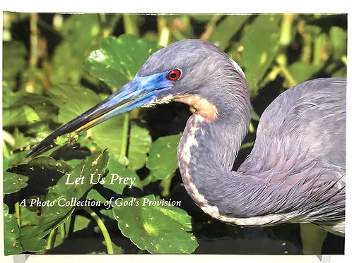 Let Us Prey photo book by artist Lillian Cucuzza