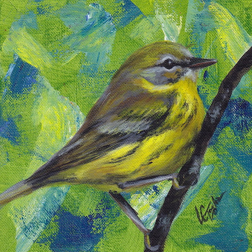 Yellow Warbler bird giclee print on canvas by artist Lee Taylor