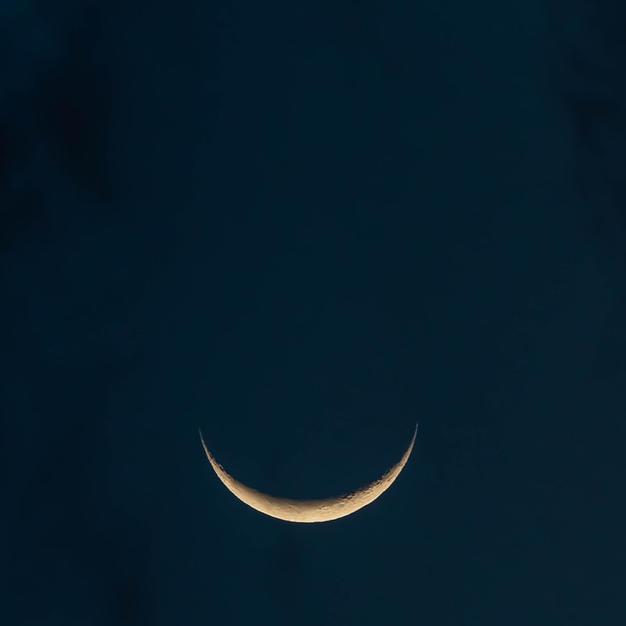The Lunar Market of Lost Selves