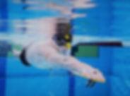 Zwemtraining 1a.jpg