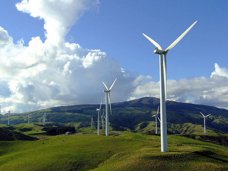 Kiwi firms join global move to certified renewable energy