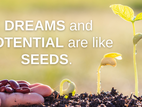 It's never too late to feed your dreams and potential