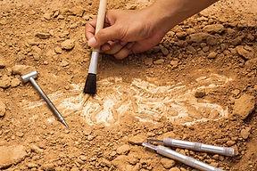 grau-arqueologia.jpg