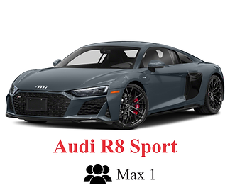 Audi R8 Sport Performance with icons and
