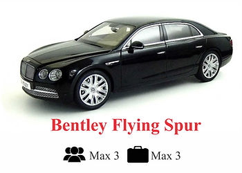 flying spur.jpg