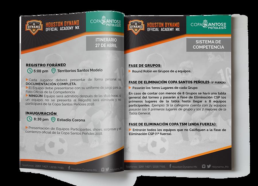 Revista Dynamo BR.png