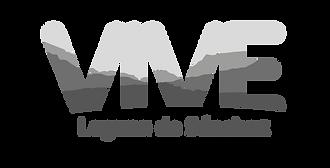 Desarrollo de identidad visual para Vivir Laguna de Sánchez. Branding en Monterrey, branding en mexico, identidad corporativa en monterrey, identidad corporativa en mexico, logotipo en monterrey, logotipo en mexico, Manual de identidad.