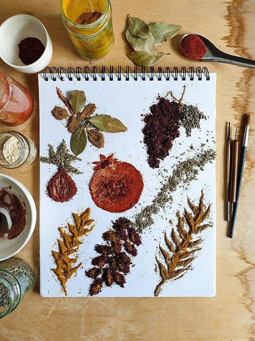 7 Species of Israel Spice Art