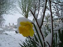 Snow 024.jpg