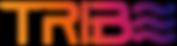 tribe logo.png