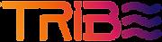 Tribe studio | עיצוב ובניית אתרים | טרייב סטודיו
