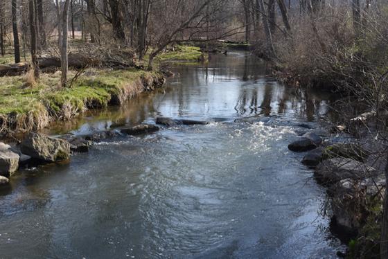 Wetlands of the Spring Creek Watershed