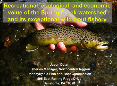 Recreational, Ecological, and Economic Value of the Spring Creek Watershed and its Exceptional Wild
