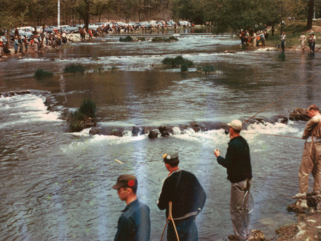 Fisherman's Paradise – An Historic Reach of Spring Creek