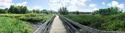 Photo 3 boardwalk