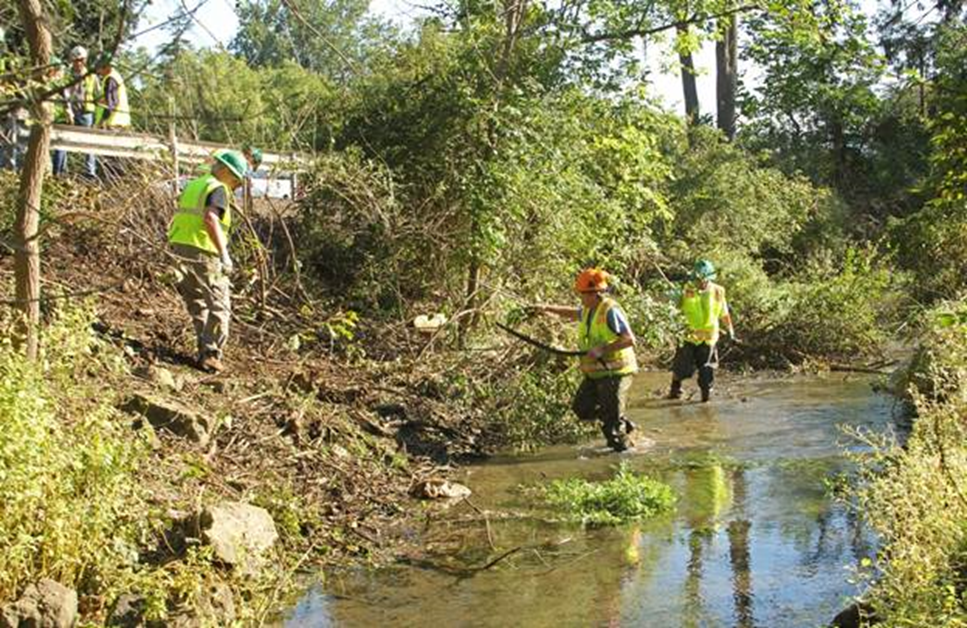 Members of Spring Creek Chapter of Trout Unlimited clearing the dike in 2016