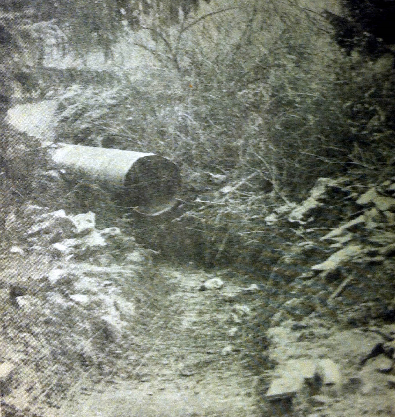 Pipe at the end of the dike - 1977